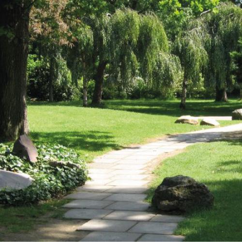 Visitez le Parc Floral de Paris