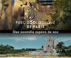 Et si j'emmenais les enfants au Zoo de Vincennes !